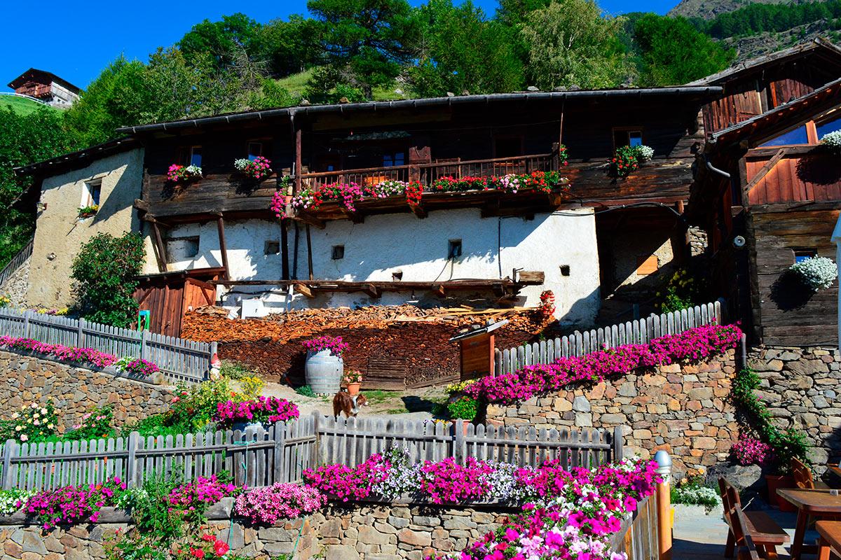 Familienurlaub - Pirchhof am Naturnser Sonnenberg in Südtirol